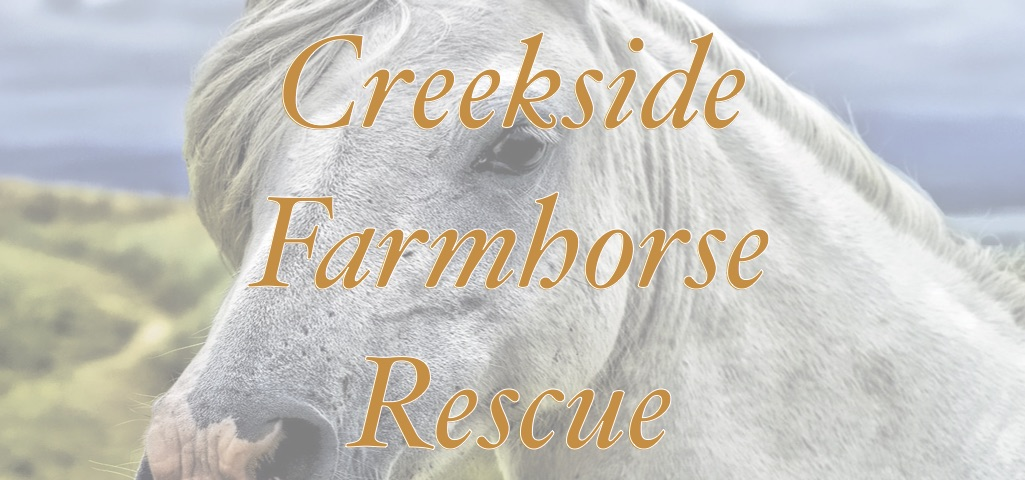 Creeksidefarmhorserescue
